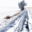 Snowy winter scenery — Stock Photo #22419003