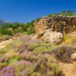 Rocky landscape of Crete — Stock Photo