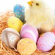Easter eggs and chick in the nest — Stock Photo