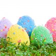 Colorful Easter eggs in garden cress — Stock Photo