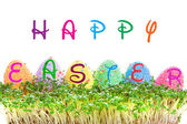 Happy Easter sign on eggs in garden cress — Stock Photo