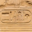 Hieroglyphic of pharaoh civilization in Karnak temple — Stock Photo #24606491