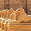 Statues of Ram-headed sphinxes in Karnak temple — Stock Photo #24610711