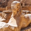 Ancient statue of sphinx in Karnak temple — Stock Photo #24630431