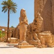 Statue of Ramesses II in Karnak temple — Stock Photo