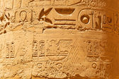 Hieroglyphic in Karnak temple of Luxor — Stock Photo