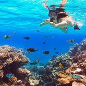Beautiful woman snorkeling in Red Sea — Stock Photo
