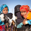 Постер, плакат: Native arabic family with donkey and goat