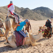 Camel ride on desert in Egypt — Stock Photo #25413621