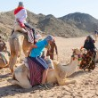 Camel ride on the desert in Egypt — Stock Photo #25413621