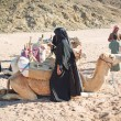 Bedouin with camels resting on desert in Egypt — Stok fotoğraf