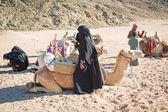 Beduinos con camellos descansando en el desierto en egipto — Foto de Stock