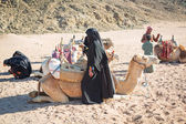 Bedouin with camels resting on desert in Egypt — Stock Photo