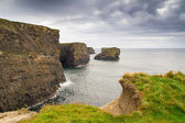 Cliffs of Kilkee in county Clare — Stock Photo