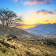 Stock Photo: Killarney pass in county Kerry at sunset