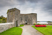 Gardens of Ashford castle — Stock Photo