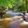 Stock Photo: Beautiful creek of Clare Glens