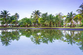 Tropical jungle of Koh Kho Khao reflected in the pond — Stock Photo