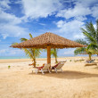 Tropical beach scenery — Stock Photo #26416013