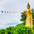 Statue of standing golden Buddha — Stock Photo #26871469