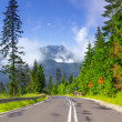 Empty road in Tatra mountains — Stock Photo