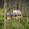 Stock Photo: Shelter in forest of Tatrmountains