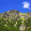 Стоковое фото: Beautiful scenery of Tatra mountains