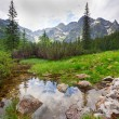 Beautiful scenery of Tatra mountains — Stock Photo #27726075