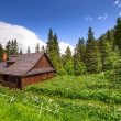 Beautiful scenery of Tatra mountains — Stock fotografie #27726851