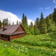 Beautiful scenery of Tatra mountains — Stock Photo #27726851