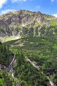Cascades of mountain creek in Tatra National Park — Stock Photo