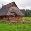 Stock Photo: Traditional wooden hut in Tatra mountains