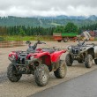Quad trip in Tatrmountains near Zakopane — Stock Photo #27976405