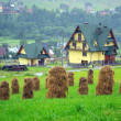 Haystacks on the field in Zakopane — Stock Photo