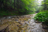 Rocky creek in Tatra mountains — Stock Photo