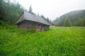 Wooden shelter in the forest of Tatra mountains — Stock Photo