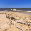 Stock Photo: Beach of the Baltic Sea in Sobieszewo