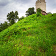 Tower of the castle in Kazimierz Dolny — Stock Photo #30564111