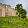 Ruins of the castle in Kazimierz Dolny — Stock Photo