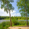 Stock Photo: Idyllic lake scenery
