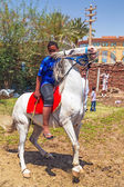 Arabic boy on the white horse — Stock Photo