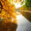 Beautiful park pond in autumn — Stock Photo