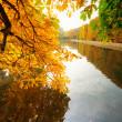 Beautiful park pond in autumn — Stock Photo