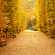 Autumnal park alley — Stock Photo