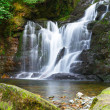Torc waterfall in Killarney National Park — Stock Photo #34712131