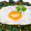 Fried egg on spinach — Stok fotoğraf