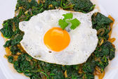 Fried egg on spinach — Stock Photo