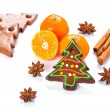 Homemade gingerbread with oranges and spices — Stock Photo