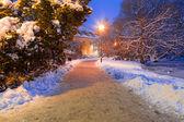 グダニスクの雪に覆われた公園の冬の風景 — ストック写真