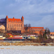 Teutonic castle in Gniew town at Wierzycriver — Stock Photo #37390045